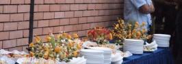ემერიტუსის წოდების მინიჭების საზეიმო ცერემონიალი, 2009