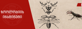 ილიაუნის ზოოლოგიის ინსტიტუტის თანამშრომლები მე-10 საერთაშორისო ზოოლოგიურ კონგრესზე