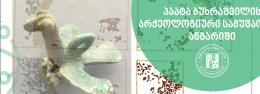 პაატა ბუხრაშვილის არქეოლოგიური სამუშაოების ანგარიში