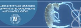 ილიაუნის ზოოლოგიის ინსტიტუტის თანამშრომელმა ბოლოფეხიანების ახალი სახეობა აღწერა