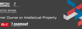 Primer Course on Intellectual Property